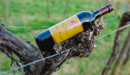 Wein-Package